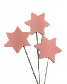 Icing Star on wire